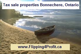 Tax sale properties Bonnechere, Ontario