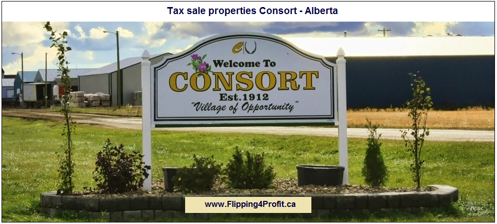 Tax sale properties Consort - Alberta