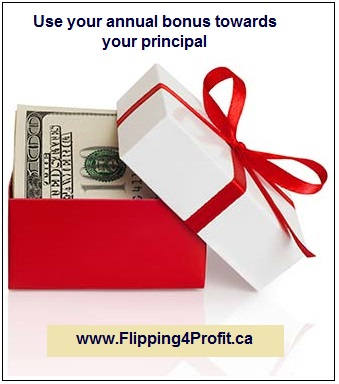 Use your annual bonus towards your principal