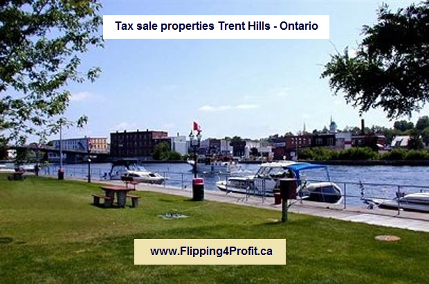 Tax sale propertiesTrent Hills