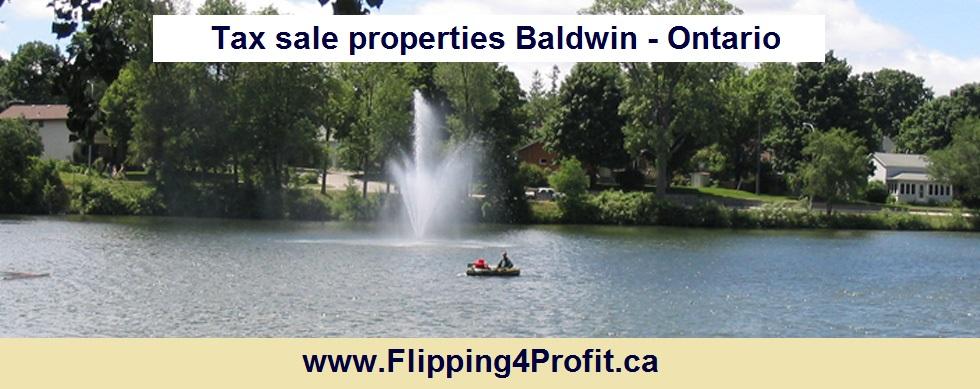 Tax sale properties Baldwin - Ontario
