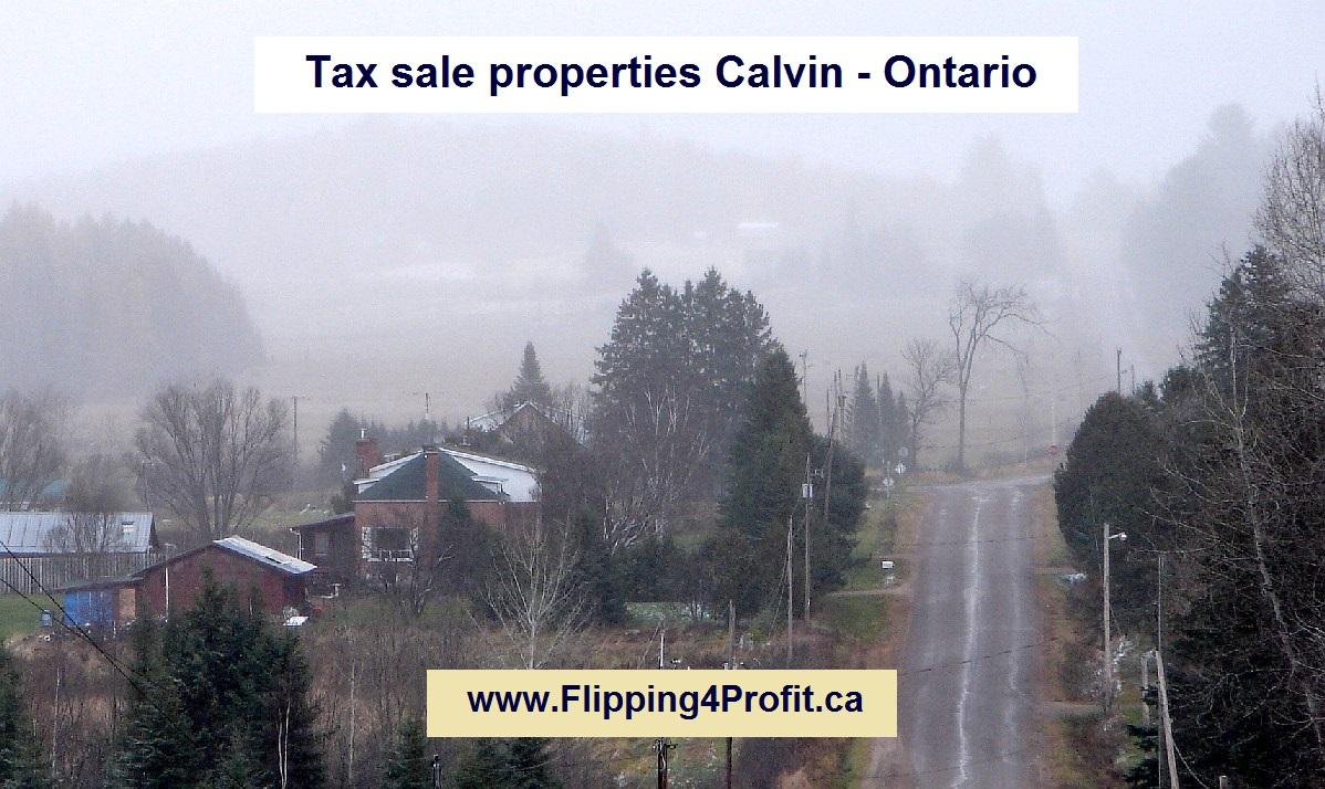 Tax sale properties Calvin - Ontario