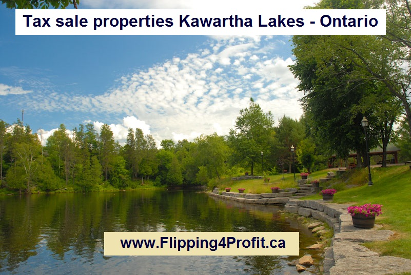 Tax sale properties Kawartha Lakes