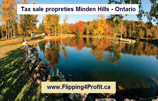 Tax sale propreties Minden Hills - Ontario