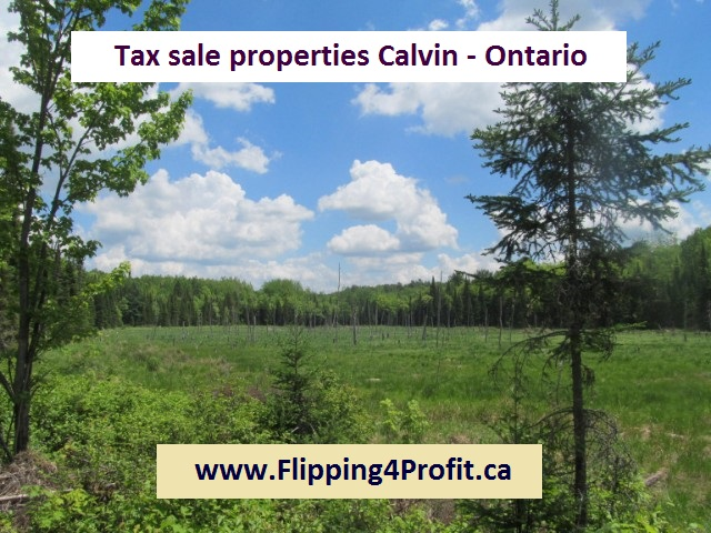 Tax sale properties Calvin - Ontario