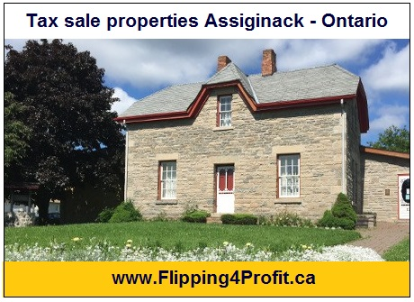 Tax sale properties Assiginack - Ontario